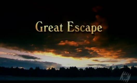 胜利大逃亡高清_《胜利大逃亡》(the great escape)[dvbrip]